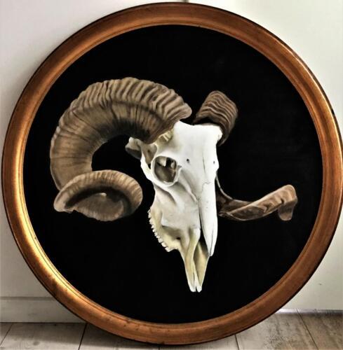 Goat skull (2)