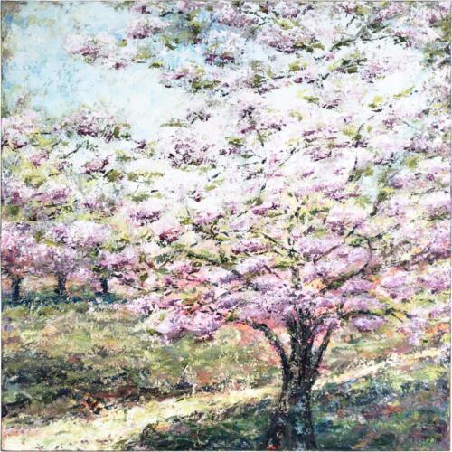 5 100x100cm Hello Spring Blooming Apple Tree